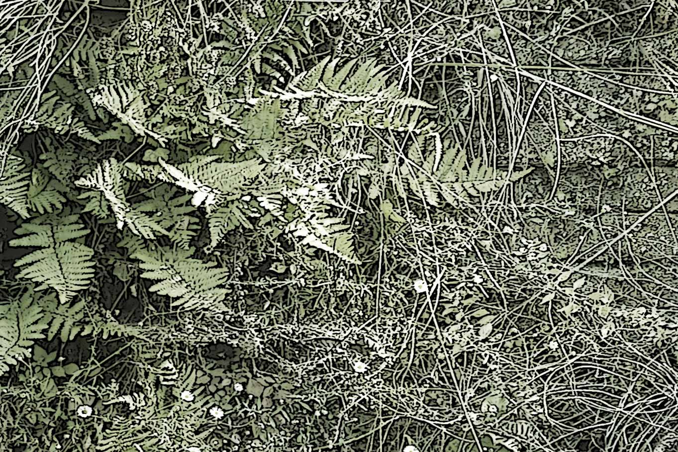 DETAIL ONDERSTE PANORAMAFOTO RECHTER PANEEL